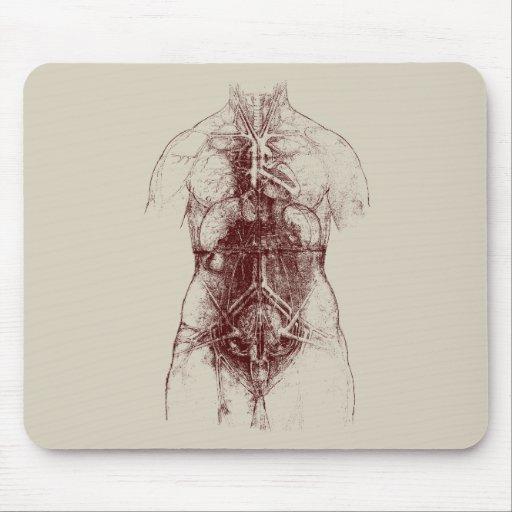 cuerpo interno tapetes de raton