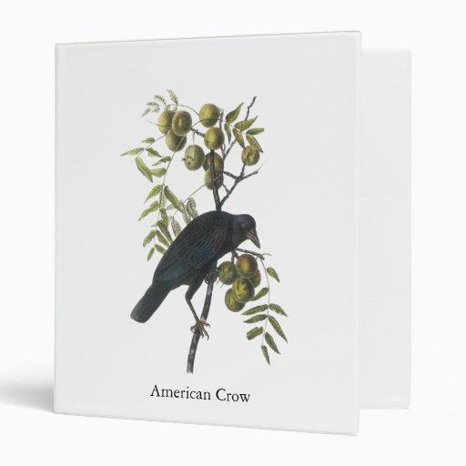 Cuervo americano, John James Audubon