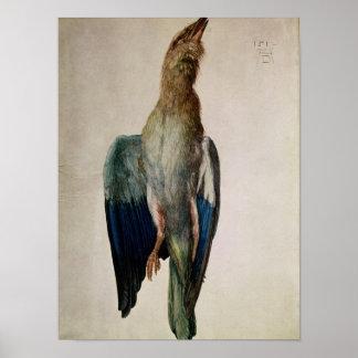 Cuervo azul, 1512 póster