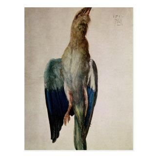 Cuervo azul, 1512 postal