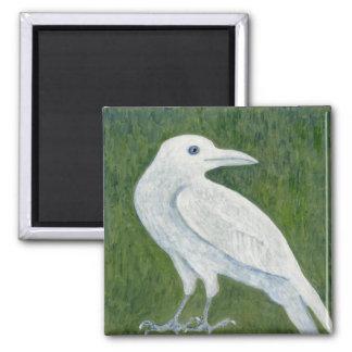 cuervo blanco imán cuadrado