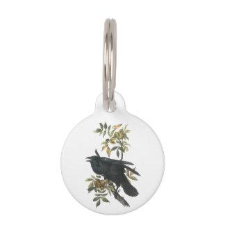 Cuervo común por Audubon Placa Para Mascotas