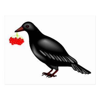 Cuervo con las bayas tarjetas postales