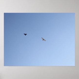 Cuervo contra el halcón III Póster