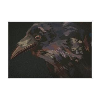 Cuervo curioso lienzo envuelto para galerias