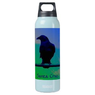Cuervo de Santa Cruz