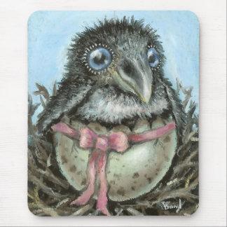 Cuervo del bebé mouse pads