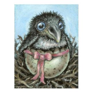 Cuervo del bebé tarjetas postales