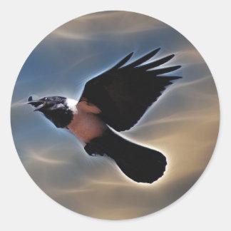 Cuervo del canto en vuelo pegatina redonda