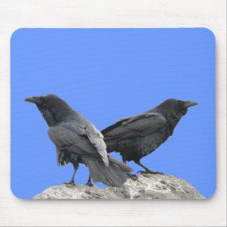 Cuervo del cuervo alfombrillas de raton