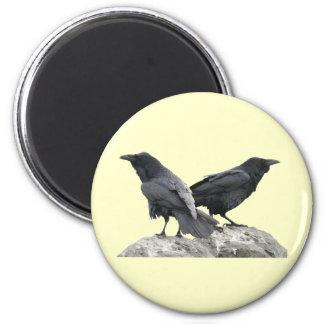 Cuervo del cuervo imán redondo 5 cm