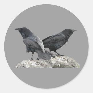 Cuervo del cuervo pegatina redonda