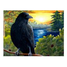 Cuervo del pájaro 63 postales