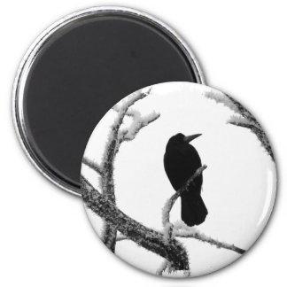 Cuervo Edgar Allan Poe del invierno de B&W Imán Redondo 5 Cm