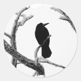Cuervo Edgar Allan Poe del invierno de B&W Pegatina Redonda