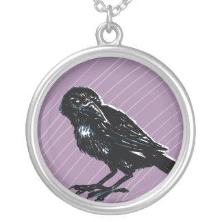 Cuervo en el collar púrpura