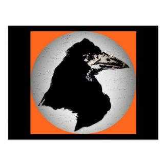 Cuervo en el naranja tarjetas postales