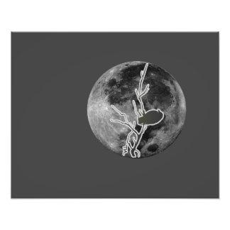 Cuervo en la luna impresiones fotograficas