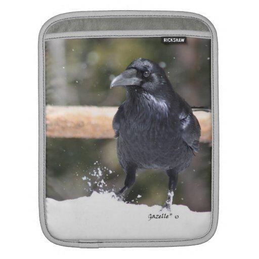 Cuervo en la nieve fundas para iPads