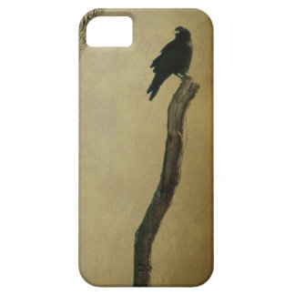 Cuervo en naturaleza iPhone 5 Case-Mate protector