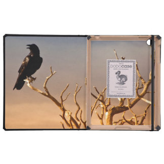 Cuervo en ramas de árbol Sunlit, Gran Cañón iPad Cobertura