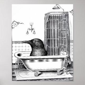 Cuervo en tina de baño del vintage póster