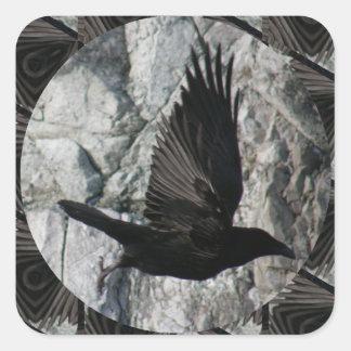 Cuervo en vuelo pegatina cuadrada