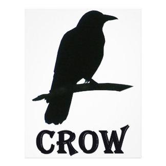 Cuervo Flyer A Todo Color
