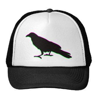 cuervo gorras