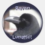 ¡Cuervo loco! Pegatinas Etiquetas Redondas