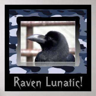 ¡Cuervo loco! Poster