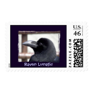 Cuervo loco sellos