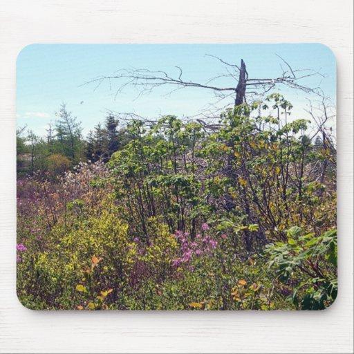 Cuervo Mousepad del susto de la naturaleza
