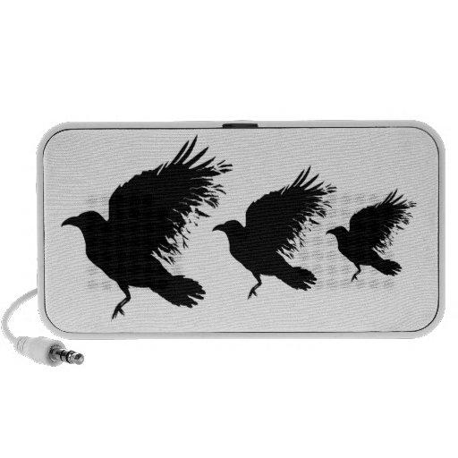 Cuervo negro - locutores de encargo altavoz de viajar