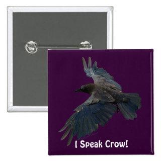 Cuervo negro místico (cuervo) para los pin cuadrado