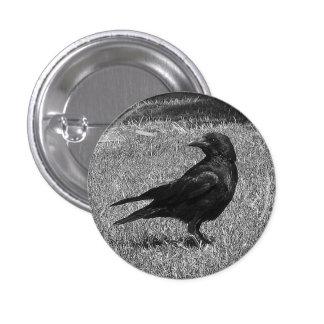 Cuervo negro pin redondo de 1 pulgada