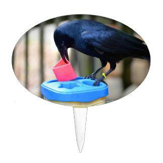 cuervo negro que pone forma en pájaro elegante del decoración de tarta