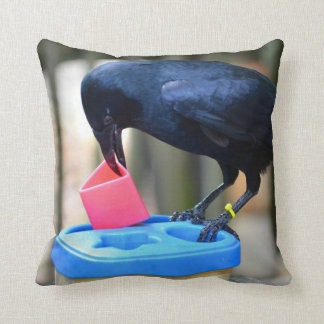cuervo negro que pone forma en pájaro elegante del almohadas