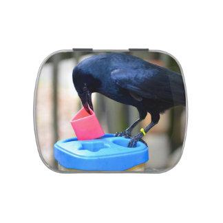 cuervo negro que pone forma en pájaro elegante del frascos de dulces