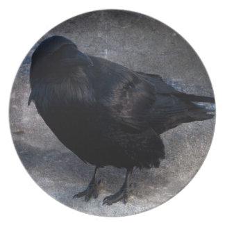 Cuervo sucio; Ningún texto Plato De Comida