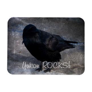 Cuervo sucio; Recuerdo del territorio del Yukón Iman De Vinilo