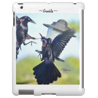 Cuervos de Grackles que luchan el caso de Barely T Funda Para iPad