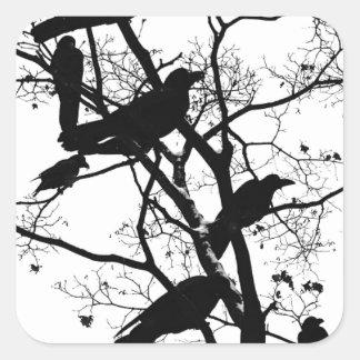Cuervos negros pegatina cuadrada