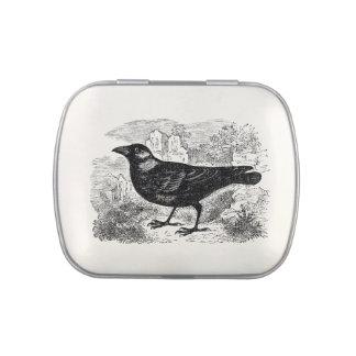 Cuervos personalizados pájaro de los pájaros del latas de caramelos