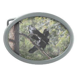 Cuervos que hablan en la montaña hebillas de cinturon ovales