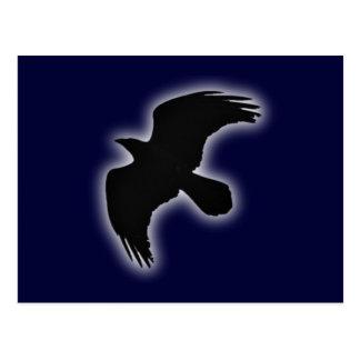 Cuervos raven postales