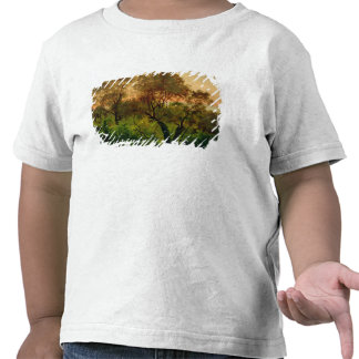 Cuesta con los olivos camisetas