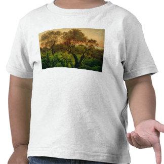 Cuesta con los olivos camiseta