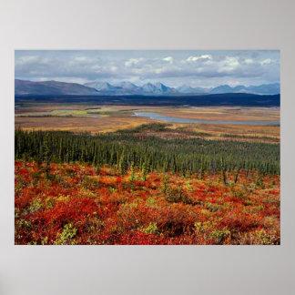 Cuesta del norte Alaska Poster