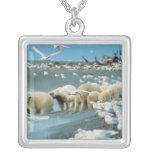 Cuesta del norte, Alaska. Ursus de los osos polare Grimpola